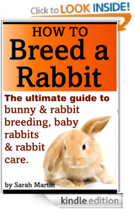 How To Breed A Bunny