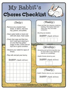 Rabbit Chores Checklist-sized